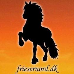 friesernord.dk